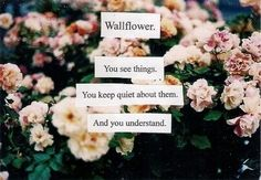 wallflower- this quote from perks of being a wallflower absolutely touched my heart idk why