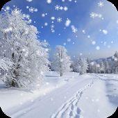 Kış Kar