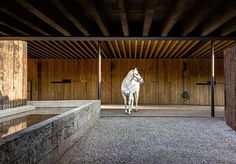 Runner up: Equestrian Centre in Valle de Bravo, Mexico by CC Arquitectos Equestrian Stables, Equestrian Outfits, Dream Barn, Horse Stalls, Horse Farms, Modern Materials, Architecture Design, Horse Riding, Agriculture