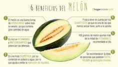 El melón es una fruta refrescante propia de los meses de verano. Descubre sus características, conservación y propiedades nutricionales.