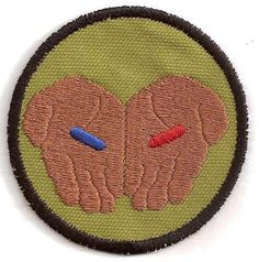 The Matrix Red Pill Blue Pill Merit Badge