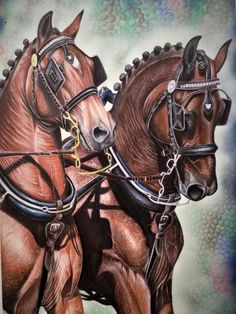 Horses by doremefa