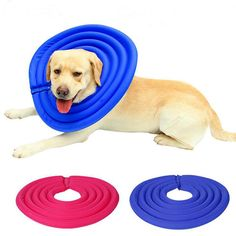 Inflatable Pet Dog Collars Dog E-Collar Pet Protection Medical Wound Healing Soft Elizabethan Safety Collars For Large Dogs Cats #Affiliate