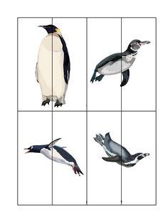 Okul öncesi dönemde kullanılabilecek penguen konulu etkinliklerimiz bu sayfamızda bulunmaktadır.Bağcık geçirmeden boyama çalışmalarına kadar birçok etkinliği penguen sayfamızda bulabilirsiniz.Şekilleri,renkleri,eşleştirme konularını da tekrar etmiş olacaksınız.Bu sayfamızda;  Okul öncesi ön yazı çalışmaları Kalem kontrol çalışmaları Okul öncesi büyük-küçük kavramı etkinliği Okul öncesi penguen boyama sayfaları Penguen puzzle etkinlikleri Okul öncesi penguen eşleştirme çalışmaları Okul öncesi…