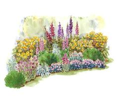 Flower Garden A Bold Cottage Garden Add interest and drama to your yard with this eye-catching, long-blooming garden plan. Garden size: 20 by 10 feet. - Create a soft, romantic feel in your yard with these garden plans. Cottage Garden Plants, Garden Shrubs, Garden Art, Garden Landscaping, Backyard Plants, Luxury Landscaping, Shade Garden, Herb Garden, Garden Beds