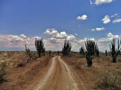 Visita al desierto de La Tatacoa | Colombia.travel, April 9, 2013. #Colombia