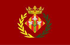 Flag of Lleida, Catalonia