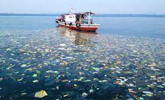 Até 88% da superfície dos oceanos está contaminada por microplásticos, afirma pesquisa