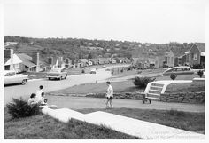 Residential scene on Greenbriar Drive - May, 1956: A neighborhood scene in Scott Township, Allegheny County. Allegheny Conference on Community Development Photographs, 1892-1981, Detre Library & Archives at the Heinz History Center.