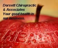 USA is best for Chiropractic and the St Louis is the place where you find great chiropractors. Chiropractic is so beneficial for health. People go for chiropractic therapy to remove the pain of the body and to get relax. This therapy makes the body smooth and Stressless.