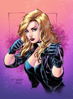 "thebestofwomenincomics: "" The Black Canary by Art Thibert """