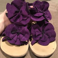 Shop Women's Purple size 7 Sandals at a discounted price at Poshmark. Zipper in back and side straps. Purple Sandals, Shoes Sandals, Minimal, Zipper, Floral, How To Wear, Things To Sell, Flowers, Zippers