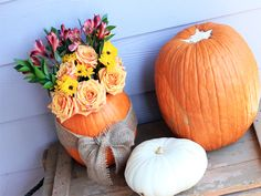 Create a gorgeous pumpkin centerpiece and tablescape that will have your guests amazed at your creativity. A tablescape doesn't have to be expensive either. Pumpkin Centerpieces, Fall Photos, Tablescapes, Roots, Thanksgiving, Thankful, Rustic, Create, Amazing