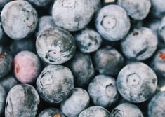 The 7 Best Brain Foods To Help You Study