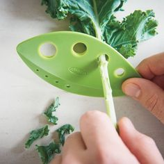 Remove those tough central ribs from your herbs with ease. Prepping your kale, Swiss chard or collards will now be easy once you have the Looseleaf Kale and Herb Stripper.