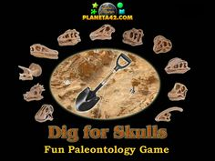 Excavate Skulls