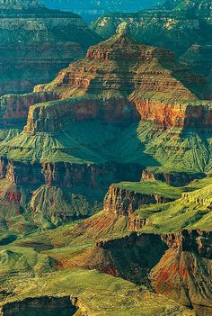 Levels of Beauty - #Grand #Canyon.  I got to take the mule trip down as a teen.   It was wonderful!