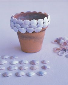 Another craft idea - my school is by the ocean, so I could easily collect all different types of shells to add to pots! Bringing the beach to my dorm room :)