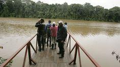 Madre de Dios: Fueron liberadas las 40 personas que estaban retenidas en el Manu