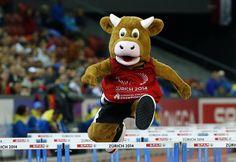 """La mascotte de ces championnats d'Europe, dénommée """"Cooly"""", s'essaie au 100 m haies, le 13 août 2014."""