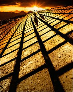 Follow the yellow brick road!! by Adrians art