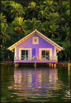 Banana's Resort by Seracat, via Flickr