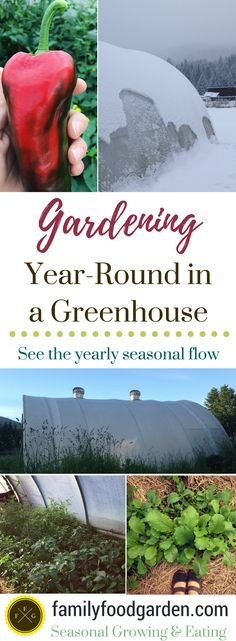Greenhouse Gardening- Grow Vegetables Year-Round