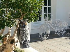 An owl to keep the birds away from the patio