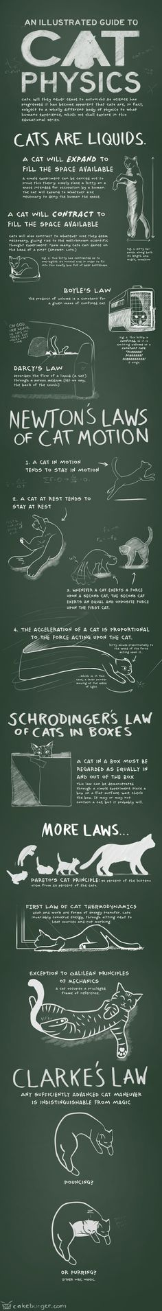 Are you a cat-loving physics fiend?Then does Cakeburger have a comic for you!See the laws of physics in a whole new light thanks to the strange, weird, and wonderful way of the cat.Full story at Cakeburger via Presurfer.For the love of cats. What about Yours?  #relax