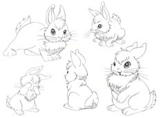 rabbit-drawing-14633-hd-wallpapers.jpg (1100×800)
