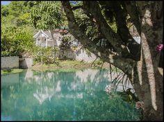 Blue Hole Gardens - Cottages for Rent in Roaring River Jamaica, Westmoreland Parish, Jamaica
