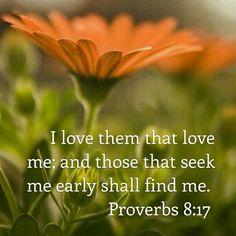 Proverbs 8:17 KJV