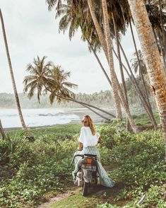 Jobs fill your pocket Wanderlust, Surf Trip, To Infinity And Beyond, Island Life, Paradise Island, Beautiful World, Beautiful Places, Belle Photo, Adventure Travel