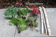 Learn how to make these beautiful outdoor Christmas planters made with Birch bra. Learn how to make these beautiful outdoor Christmas planters made with Birch branches and Winterberry. A quick and easy accent for your holiday porch decor. Outdoor Christmas Planters, Christmas Urns, Christmas Greenery, Outdoor Planters, Outdoor Christmas Decorations, Christmas Centerpieces, Rustic Christmas, Simple Christmas, Modern Planters
