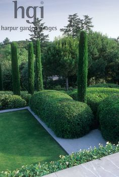 Harpur Garden Images Ltd :: tgo24 Formal design cloud pruned box Buxus spheres shapes fastigiate conifer pencil slim Cypress trees contemporary upright focal point Design: Fernando Caruncho for Mr & Mrs Postigo, Madrid Jerry Harpur