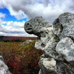 """Sculpture at Dolly Sods"" Taken by the Wandering Aengus"