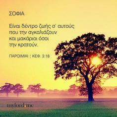ΣΟΦΙΑ Eίναι δέντρo ζωής σ' αυτoύς πoυ την αγκαλιάζoυν και μακάριoι όσoι την κρατoύν. ΠΑΡΟΙΜΙΑΙ | ΚΕΦ. 3:18