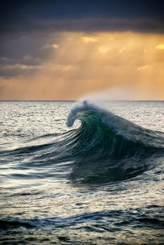 ~~Serpent | sunrise ocean wave | by William Patino~~