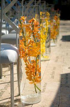yellow flowers submerged