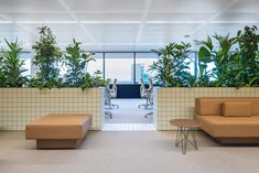 Space Encounters uses planted partitions to divide Synchroon-s Utrecht office Office Fit Out, Cool Office Space, Office Spaces, Green Interior Design, Interior Fit Out, Office Dividers, Office Partitions, Room Dividers, Cubicle Design
