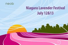 Join us on July 12&13 for Niagara Lavender Festival located at neob lavender. Roam the field, watch demos, taste lavender treats in the tasting tent. New wine and lavender tasting area. Take the tour, pick your own lavender and get your free lavender plant for charity.