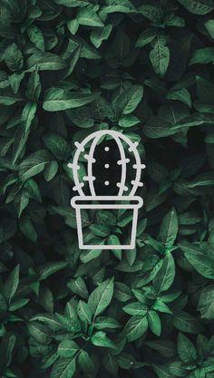 History Instagram, Instagram Story, Instagram Feed, Luminizer, Green Emoji, Hight Light, Cactus Illustration, Profile Pictures Instagram, Paper Cactus