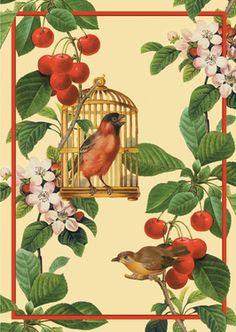 Sommerliche Grußkarte mit Vögeln zwischen Apfel Blüten und Kirschen