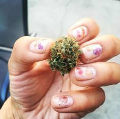 #NailsVsNugs irie_flux  Shop our #MMJCO X Sakibomb Hackysacky nail decal set on MMJCO.com! #MissMaryJane #MissMaryJaneGirls #MissMaryJaneCo #NailSwag