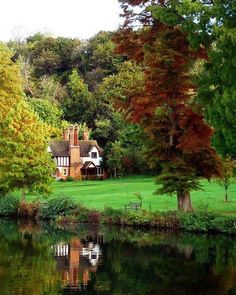 Tudor house near wood and lake