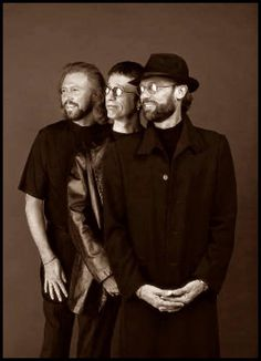 The Bee Gees: Barry, Robin, and Maurice Gibb Robin, I Love Bees, Marc Bolan, Barry Gibb, Cute Bee, Band Of Brothers, First Love, My Love, Sing To Me