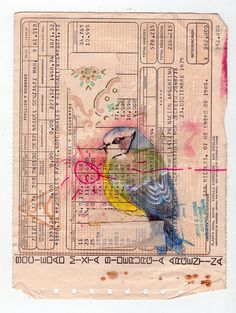 another lovely bird on ephemera