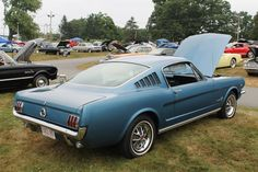 1965 mustang fastback for sale - Google Search