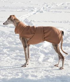 I like this coar. Would keep senor's belly warm in winter.