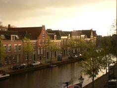 Oude Vest (voorheen Elisabeth gasthuis) Het Sint Elisabeth Gasthuishof is een hofje aan de Caeciliastraat/Oude Vest in Leiden. Het hofje bestaat uit twaalf woningen uit het tweede kwart van de 17e eeuw. Ingang tot het hofje is een opvallende poort met zandstenen omlijsting. Het hof is gevestigd in het voormalige St. Elisabeth Gasthuis (gesticht in 1428).